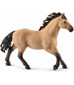 CAVALLO - STALLONE QUARTER HORSE