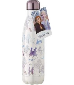 DISNEY - FROZEN 2 (METALLO, 500ML)